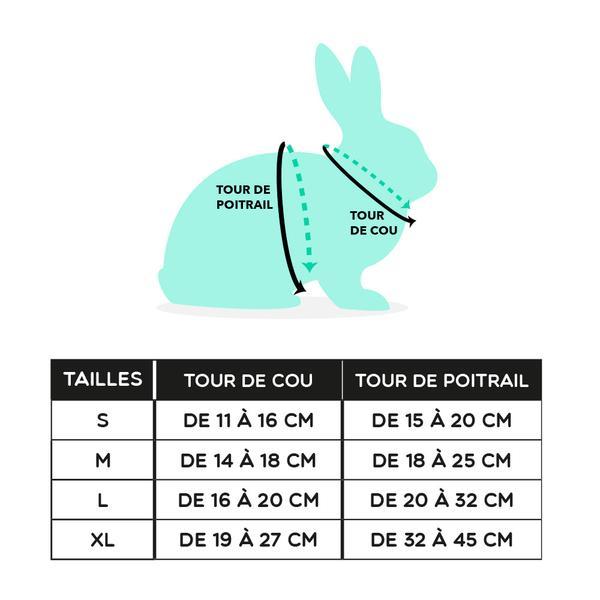 Harnais lapin guide de taille