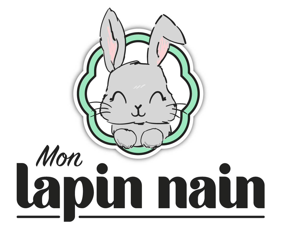 Logo mon lapin nain
