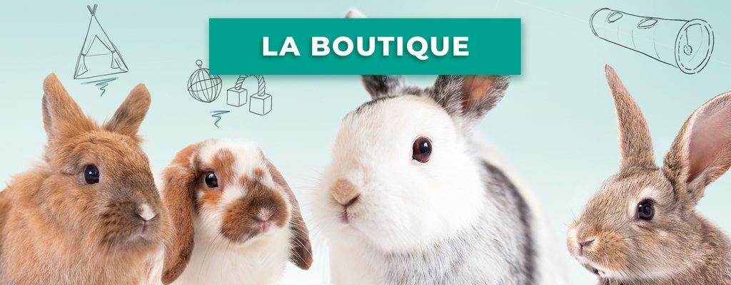 boutique pour lapin